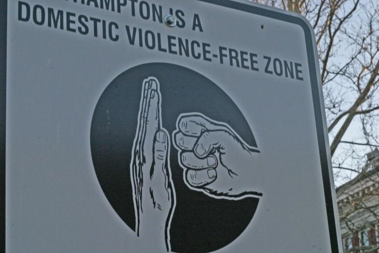 dv free zone